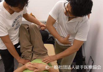 第3回|臀部下肢鼡径部の痛みをもたらすトリガーポイントへの評価と治療 2016/11/20 Sun.(東京)