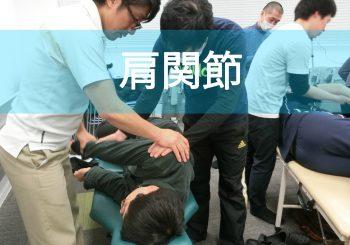 肩関節の痛みメカニズムの理解と評価・介入/肩甲上腕関節のグライドシンドロームを中心に|2017/11/19