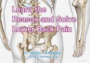 腰痛のロジカルマネジメント|徒手医療協会